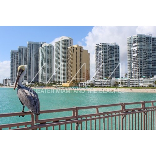 VacationWiser Guide to Miami
